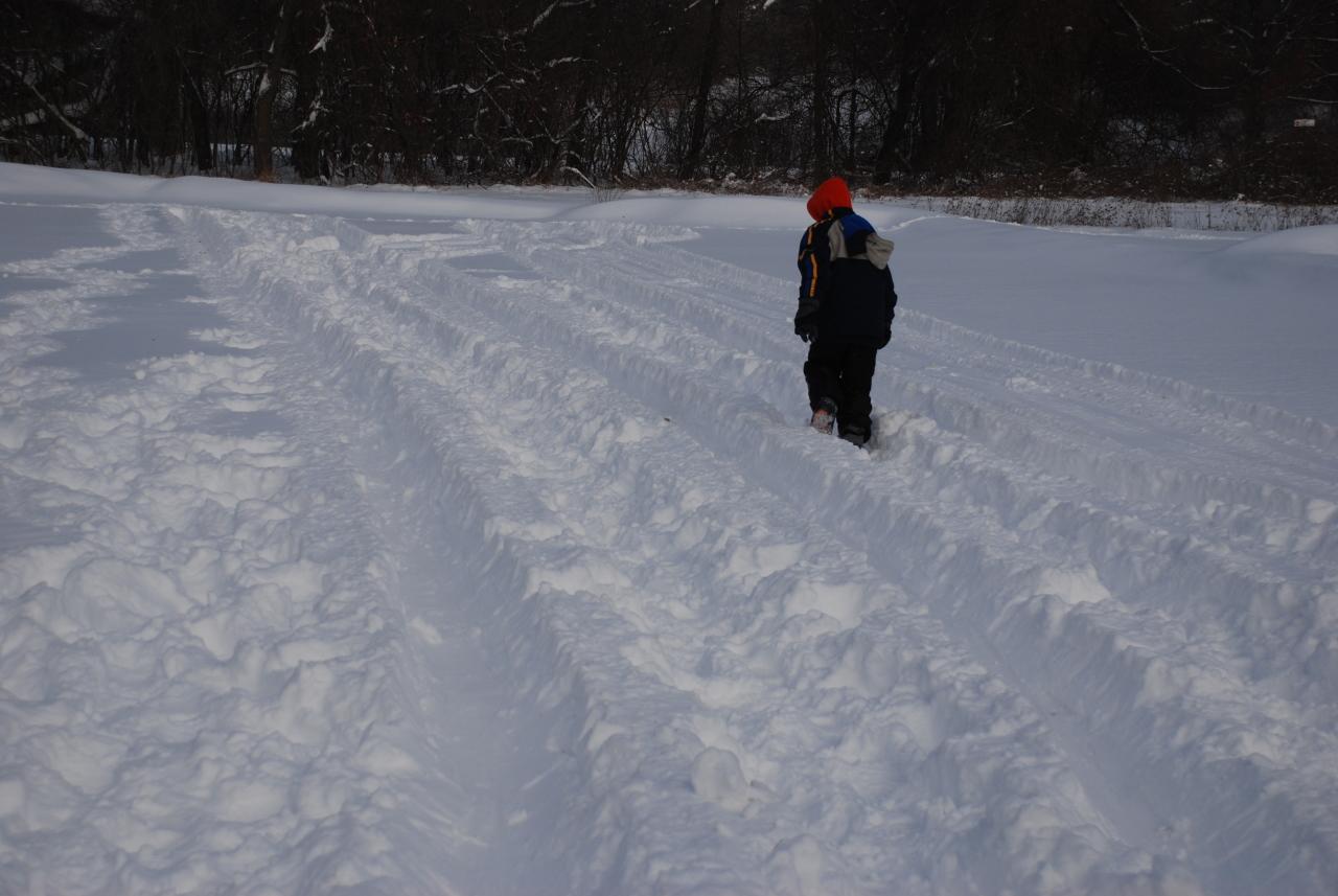 Snow Snake tracks.