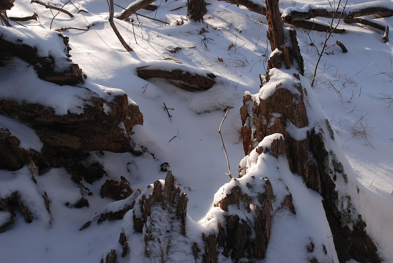 hra-snow-scene-010809-1280x1024