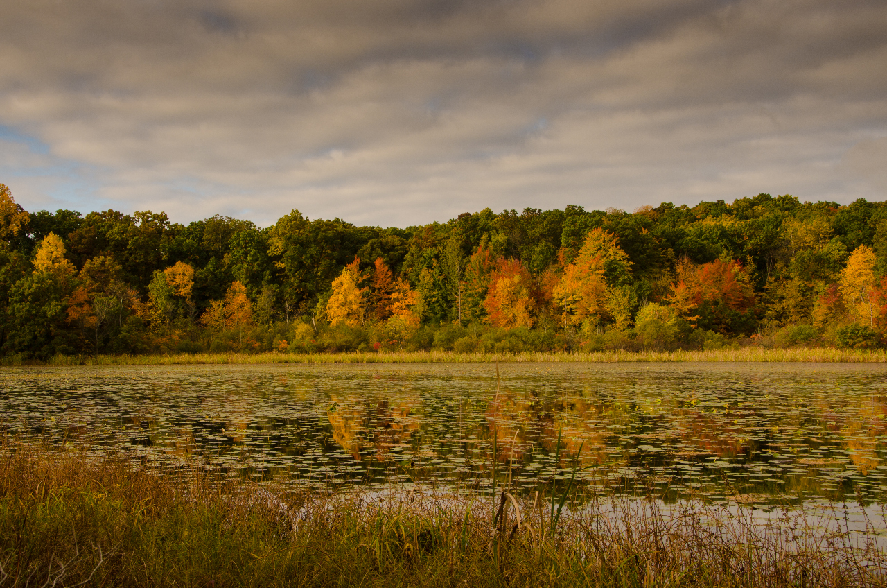 Fall Colors on Haven Hill Lake