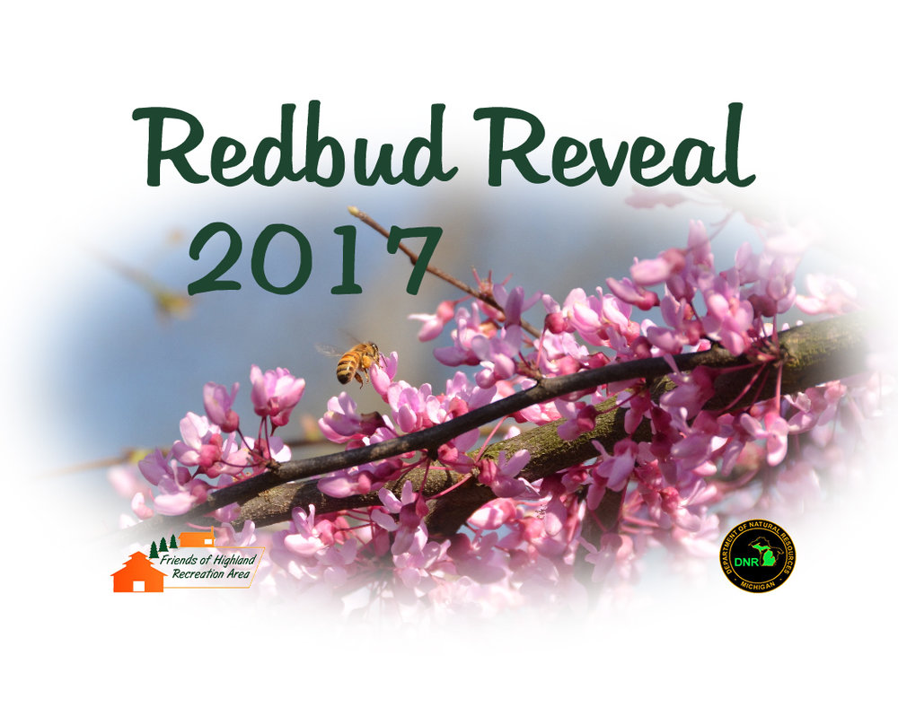 Redbud Reveal 2017 Logo on White.jpg