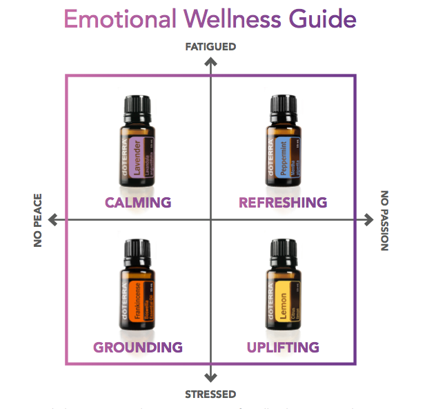 Emotional Wellness Guide PHOTO.png