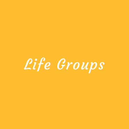 Life Groups - Life groups are a great way to find community and build deep, lasting relationships. Groups are divided by age and gender. Wesley Life Groups exist to support and challenge you through authentic sharing, truth telling, accountably, and prayer to help you take your next steps with God