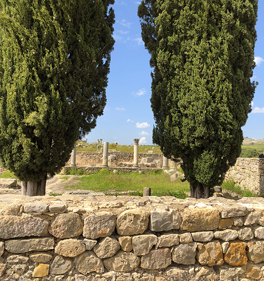 A step back in time - the Roman Ruins of Volubilis. The remains of pillars and square stone blocks that once marked the entrance to colonnaded shops stand as relics to the passage of time and cultural geography.