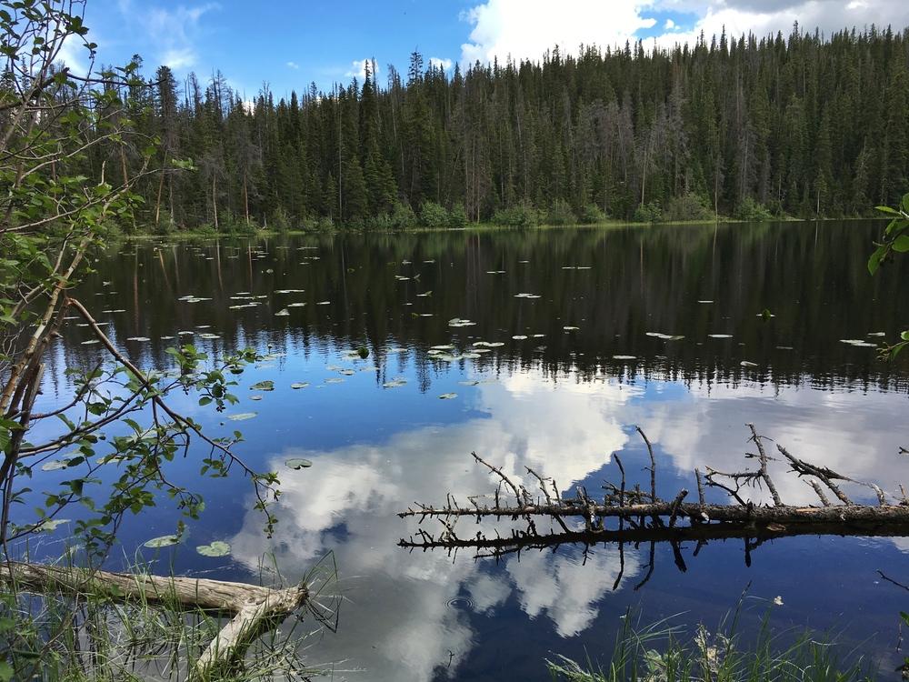 Surprise Lake!