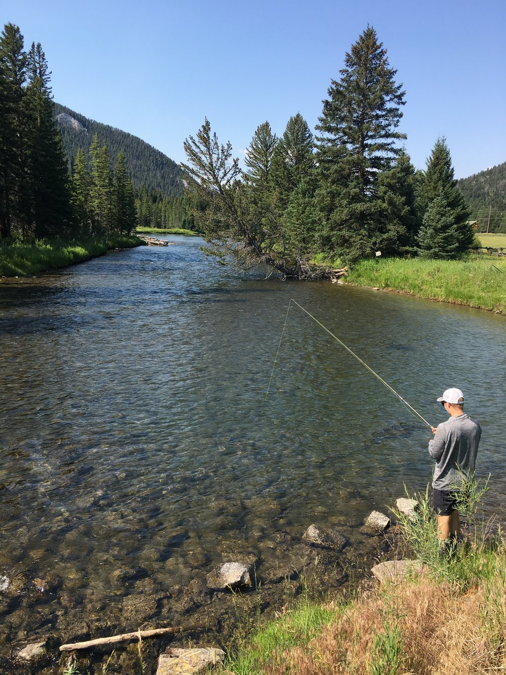 Friday - Fly fishing