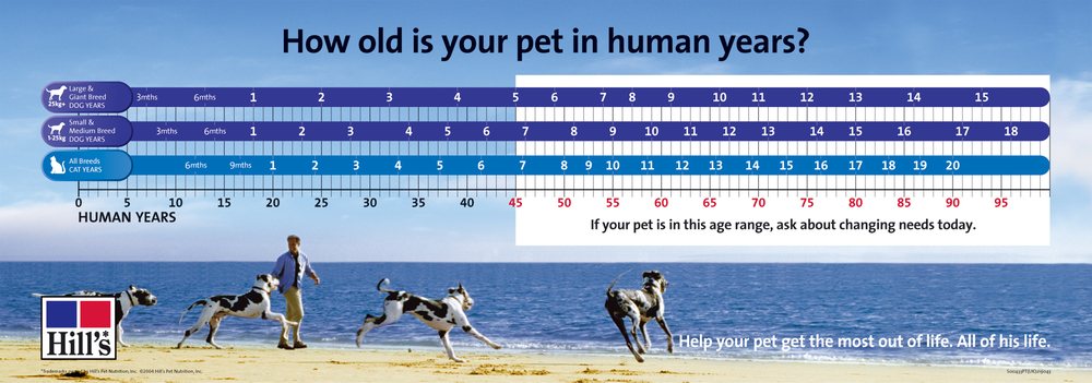 use this guide to help determine how old your pet is in 'human years'