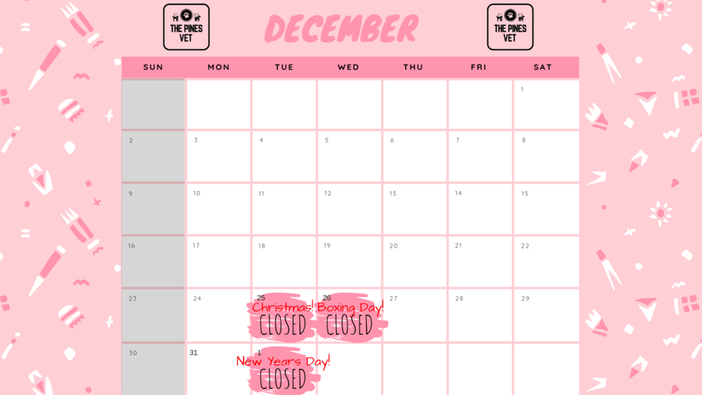 Colorful Patterned Classroom Calendar-2.png