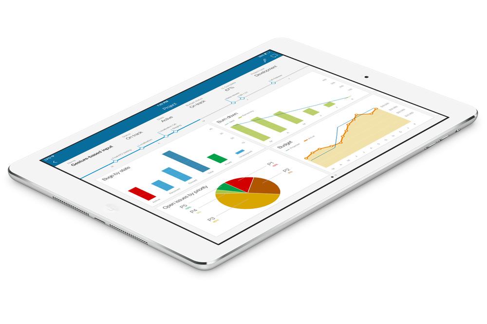 Clarizen iPad