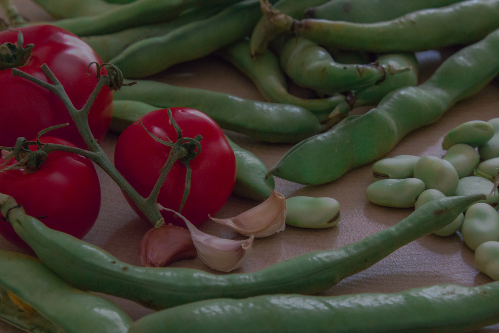 Fava beans salad 6.jpg