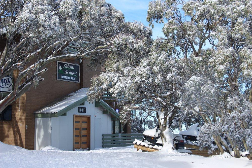 Alpine Retreat Snowgums 1.JPG