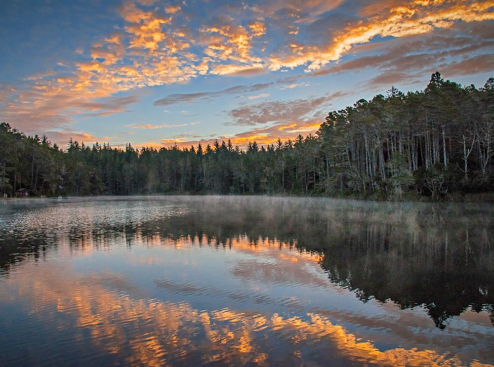 Lake at Honeyman