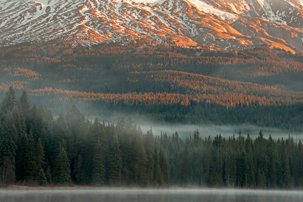 Mount Hood in the Morning Mist