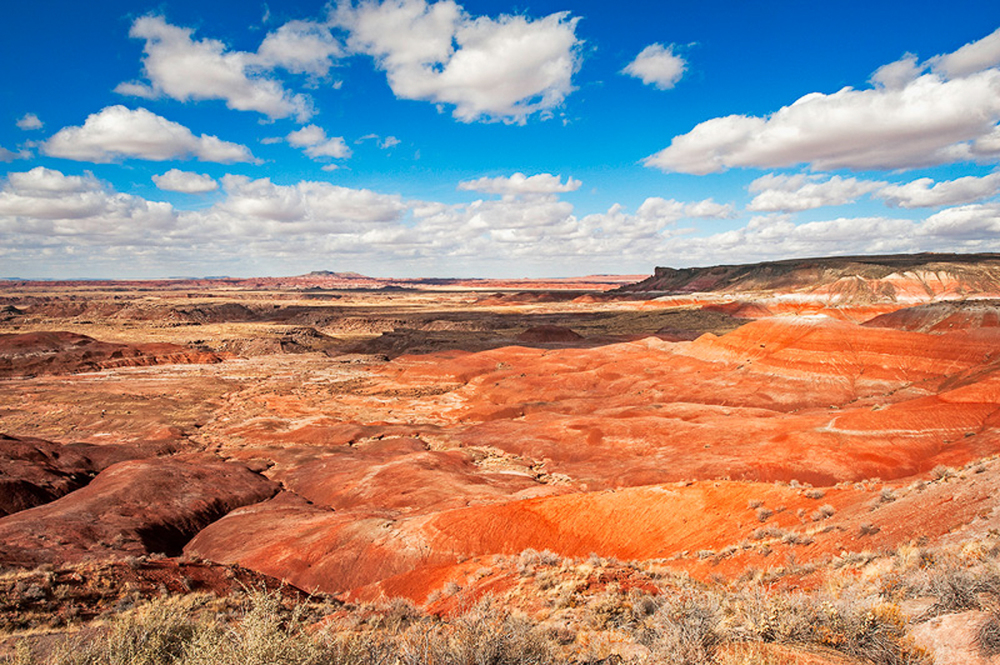 Painted Desert in the Late Afternoon Light