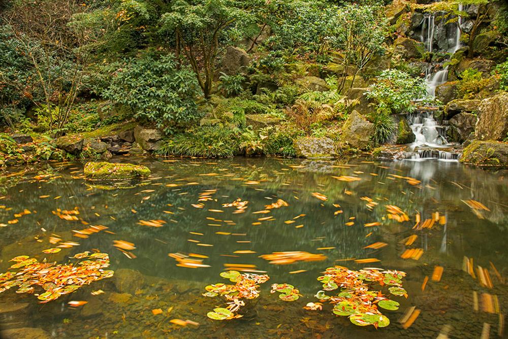 Waterfall Japanese Gardens