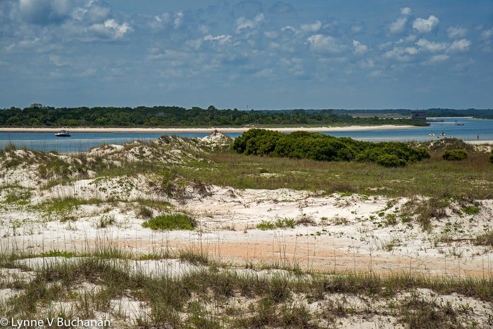 Dunes by the Matanzas Inlet