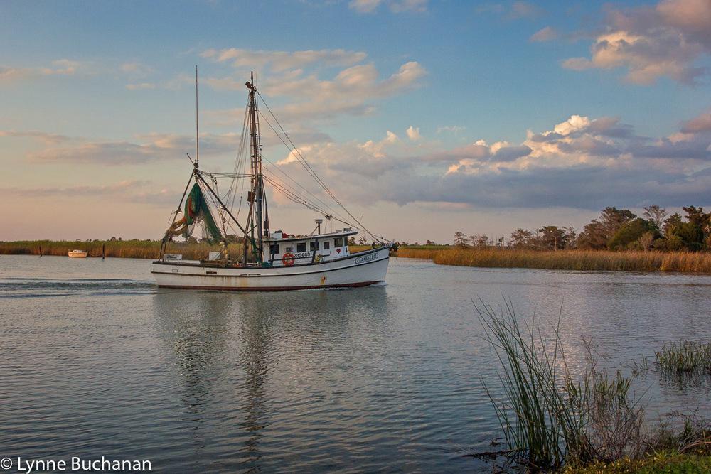 Shrimp Boat Heading Out