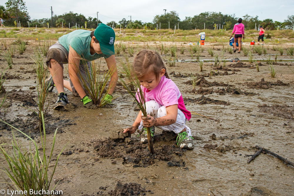Haley Planting