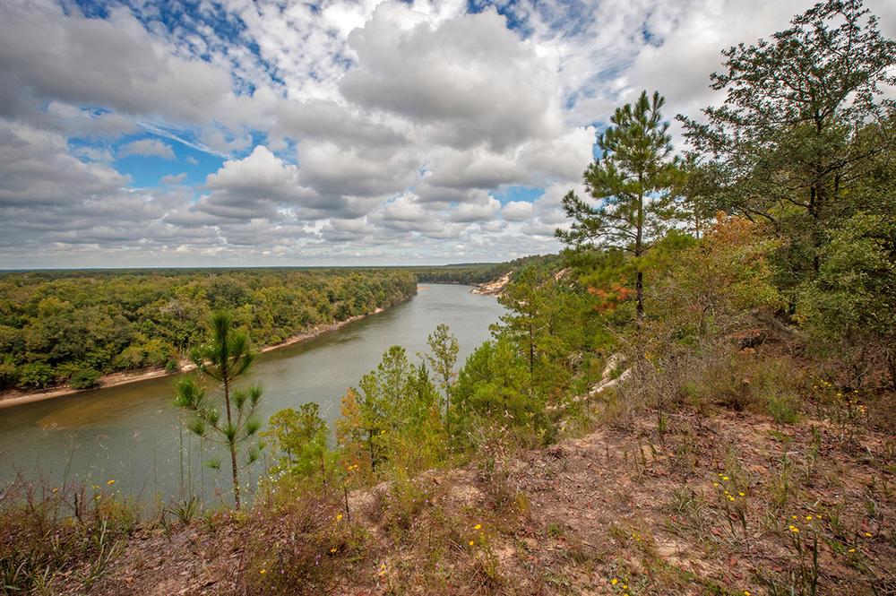 Alum Bluff, Apalachicola River