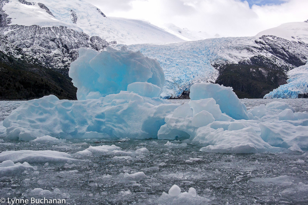 Ice Floe in front of Agostini Glacier