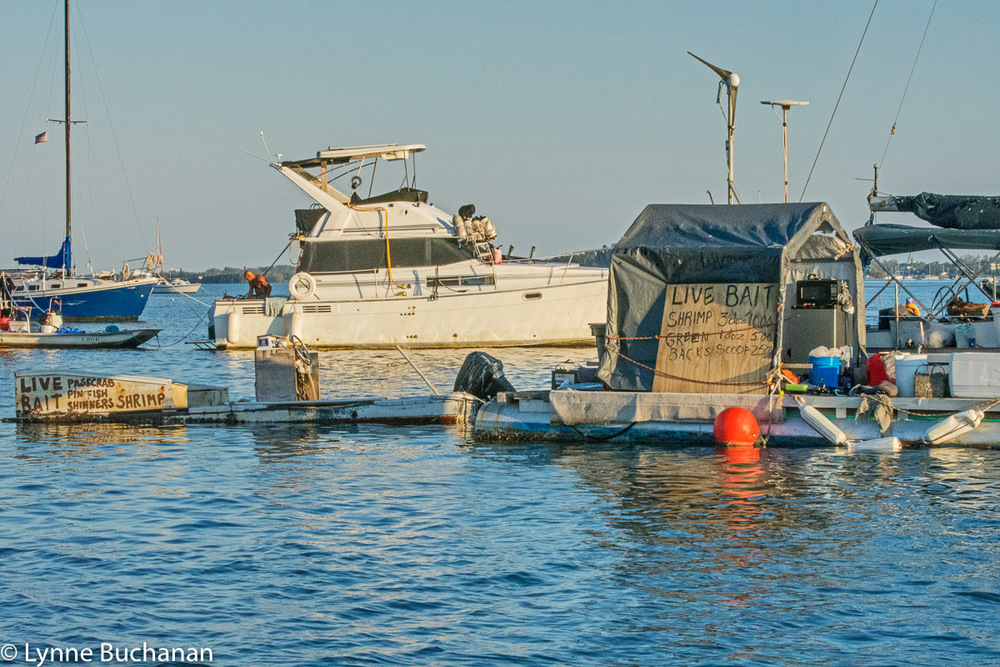 Floating Bait Shop, Cortez Fishing Village