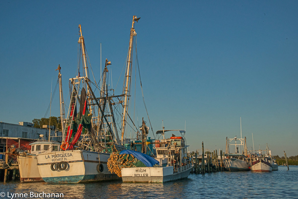 Cortez Fishing Boats, Late Afternoon Light