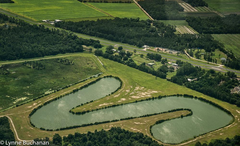 Edgefield Regional Stormwater Treatment Area