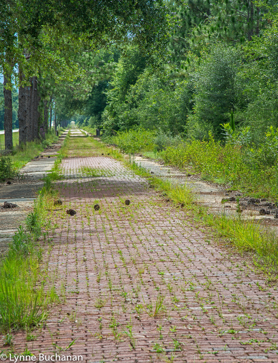 Historic Brick Road