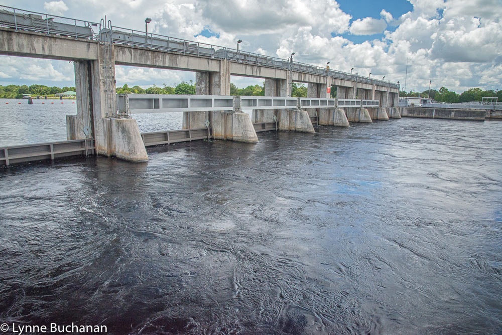 Lake Okeechobee Discharges Flooding the Caloosahatchee River under the Franklin Locks at Alva