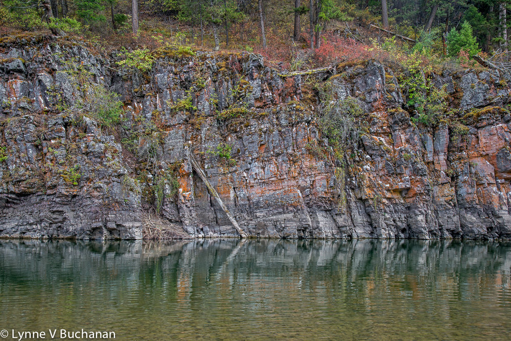 Blackfoot River Riparian Landscape