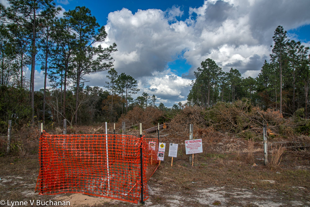 Decimated Habitats