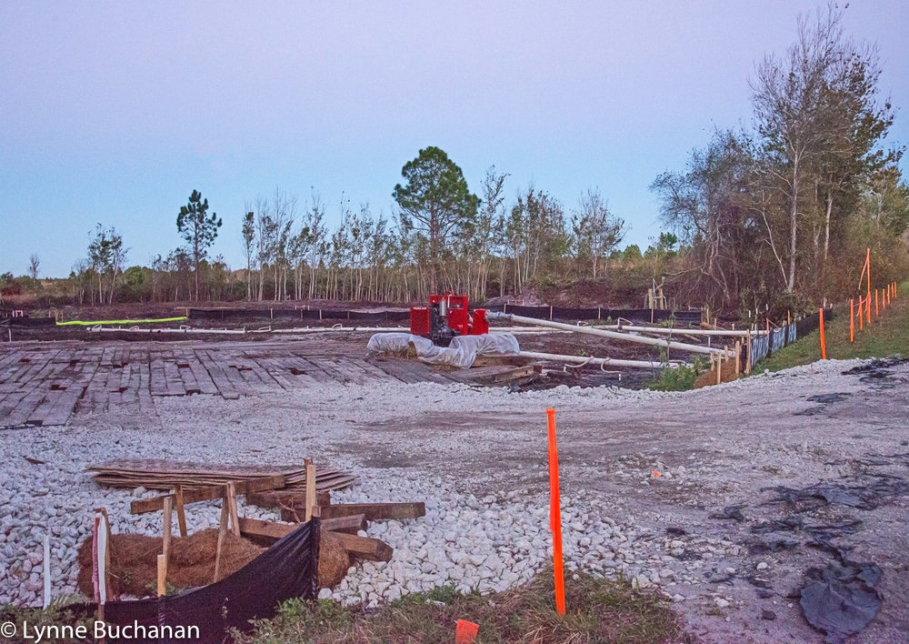 Sabal Trail Construction Site CR 474, Green Swamp