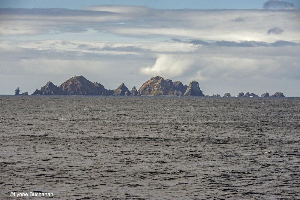 Cape Horn Islands
