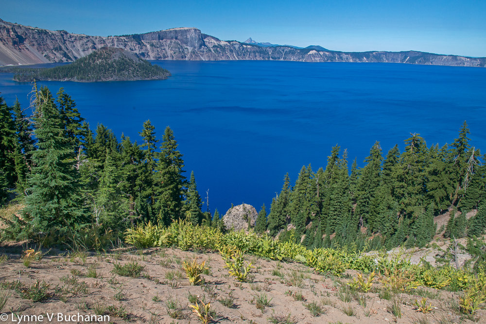 Crater Lake from the Garfield Trail