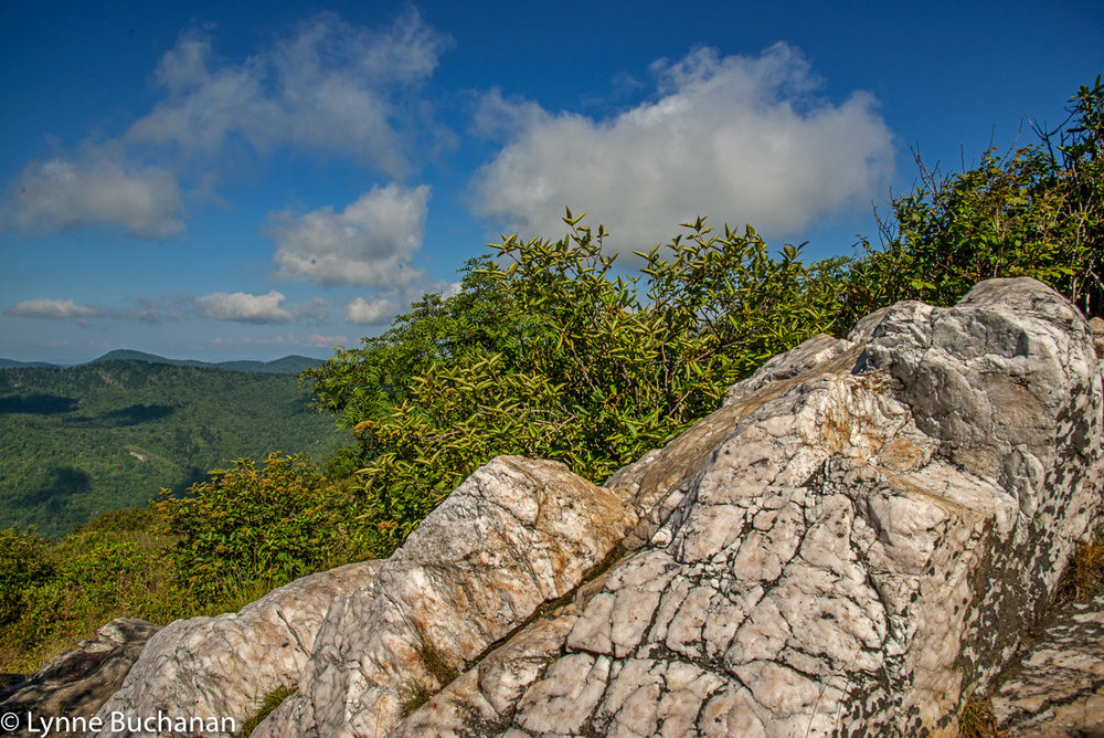 Rocky Outcropping, Sam Knob Trail