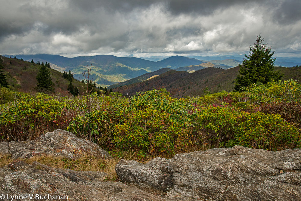 Shining Rock Wilderness Area from the Trail to Tennent Mountain