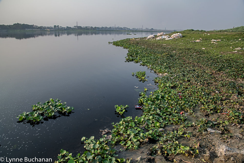 The Dhaleshwari River Downstream from the Savar Tannery Park