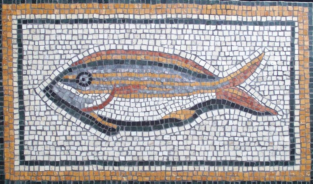 Cypriotic Fish