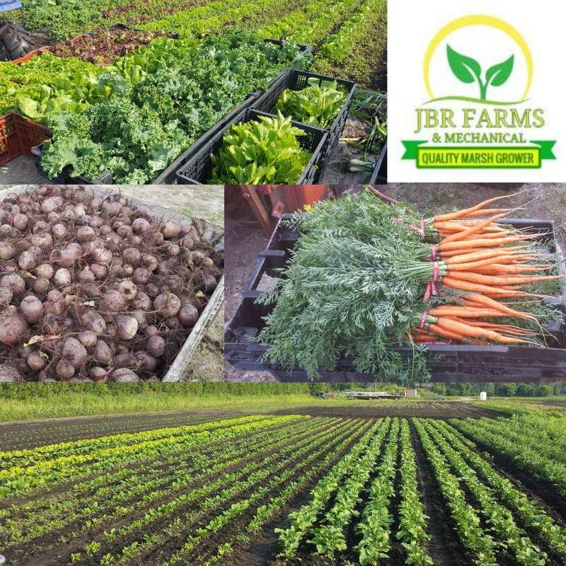 JBR Farms (smaller).jpg