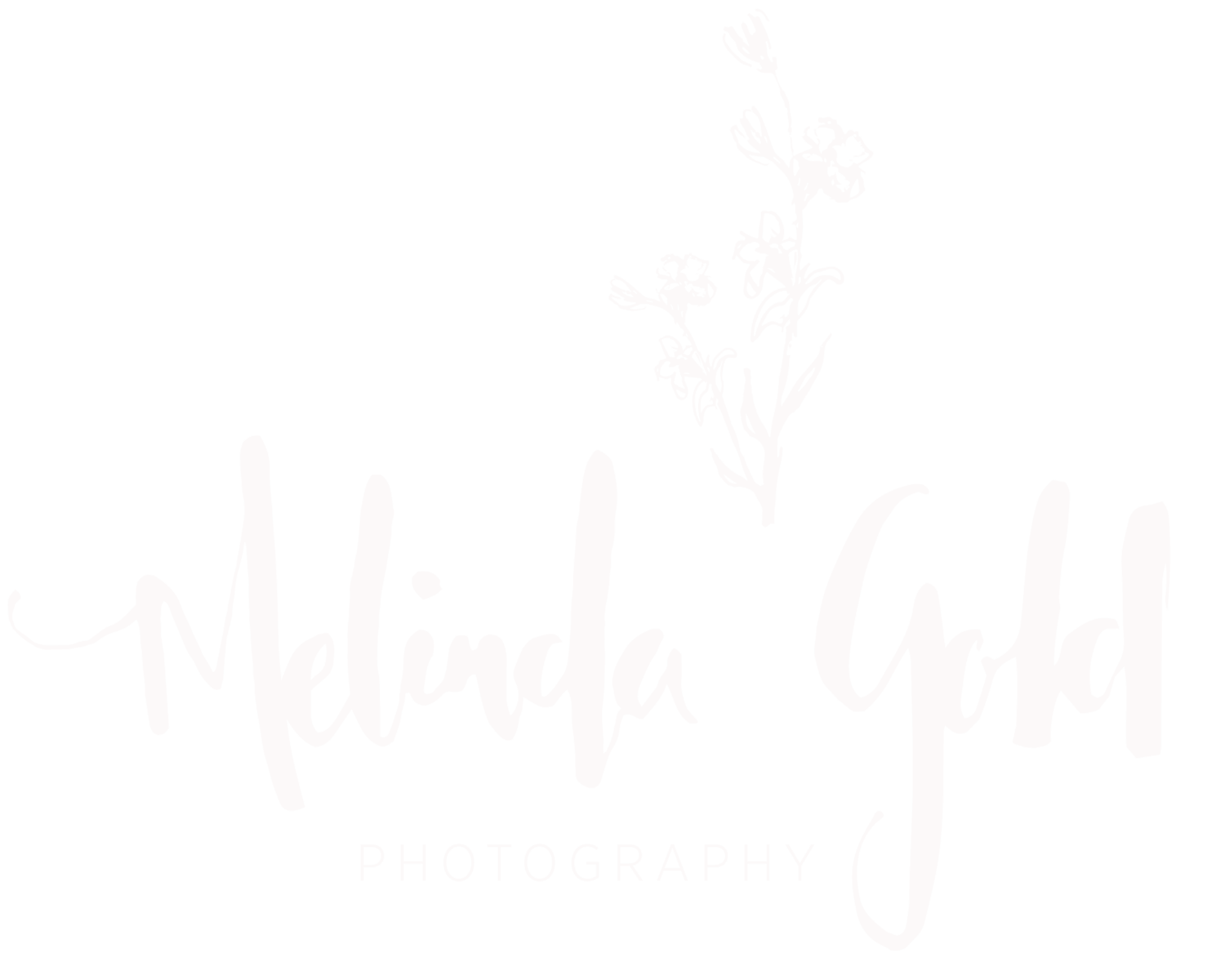 melinda gold photography