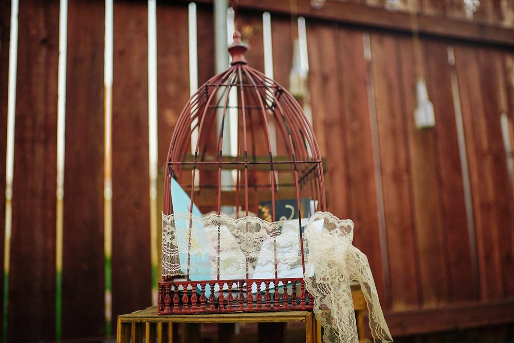 Birdcage-1.jpg