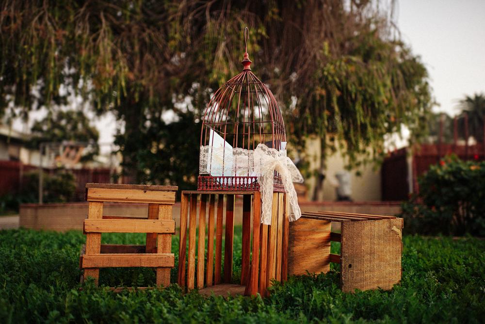 Birdcage-5.jpg