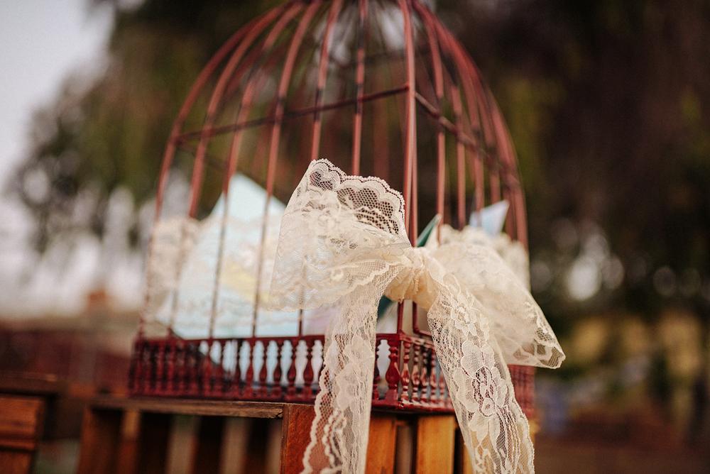 Birdcage-6.jpg