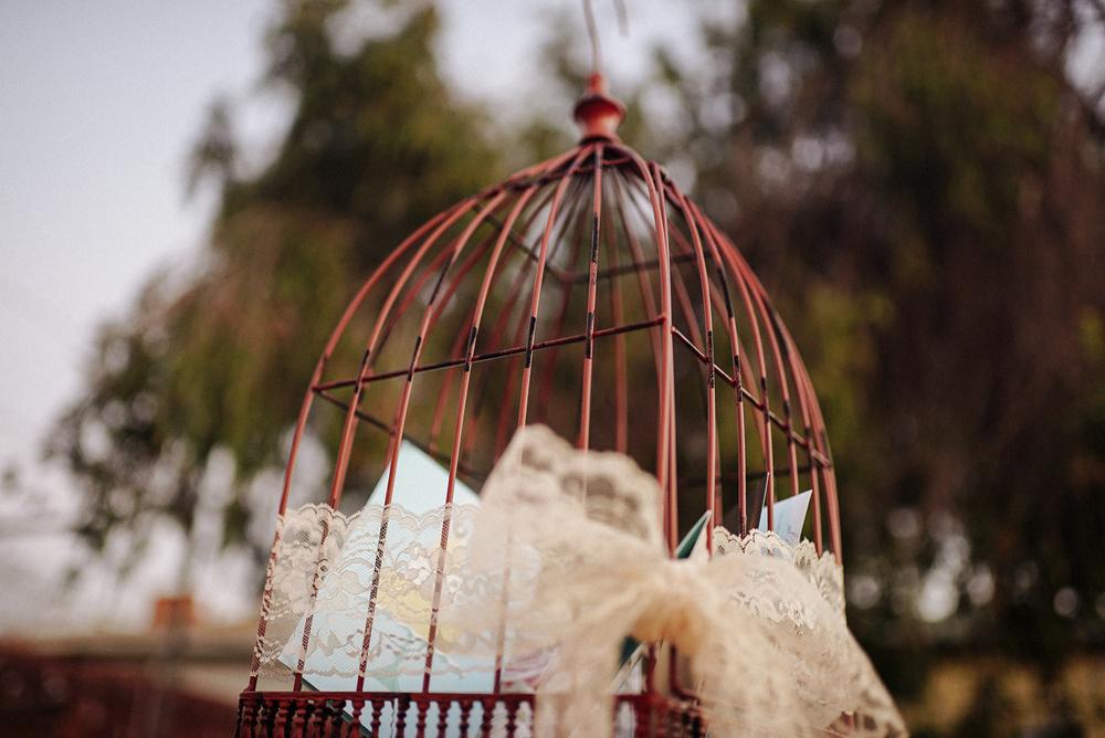Birdcage-7.jpg