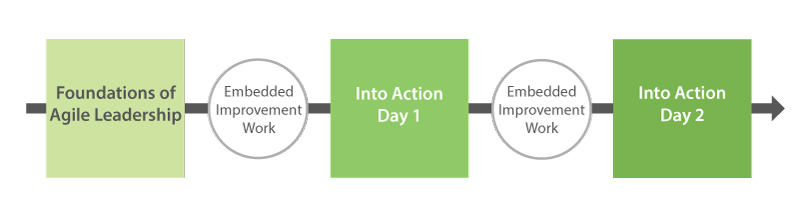 Agile Leadership Into Action Overview
