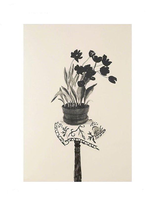 Inspiration from David Hockney ; 'Black Tulips' , 1980