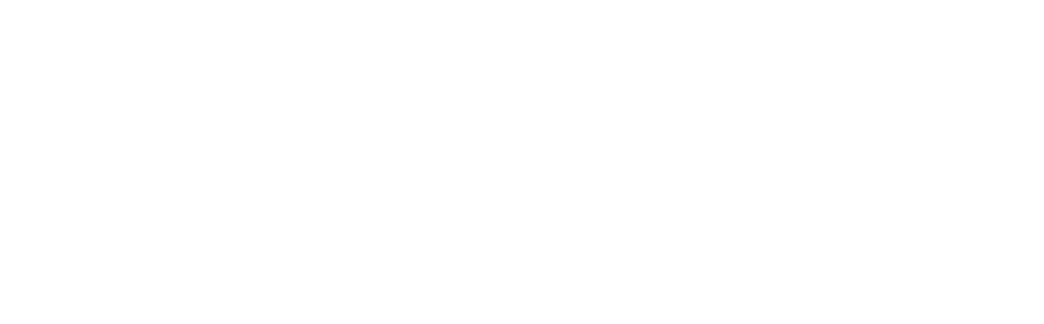 Seafox IT