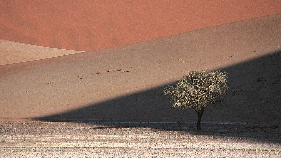 Couleurs du sable copie.jpg