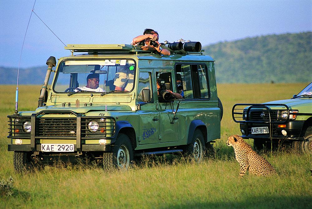 safarivoiture.jpg