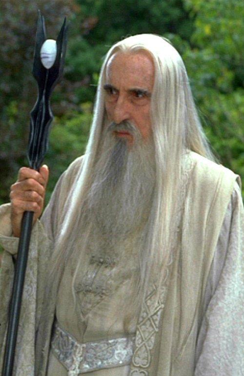 Saruman-saruman-20940151-500-770.jpg