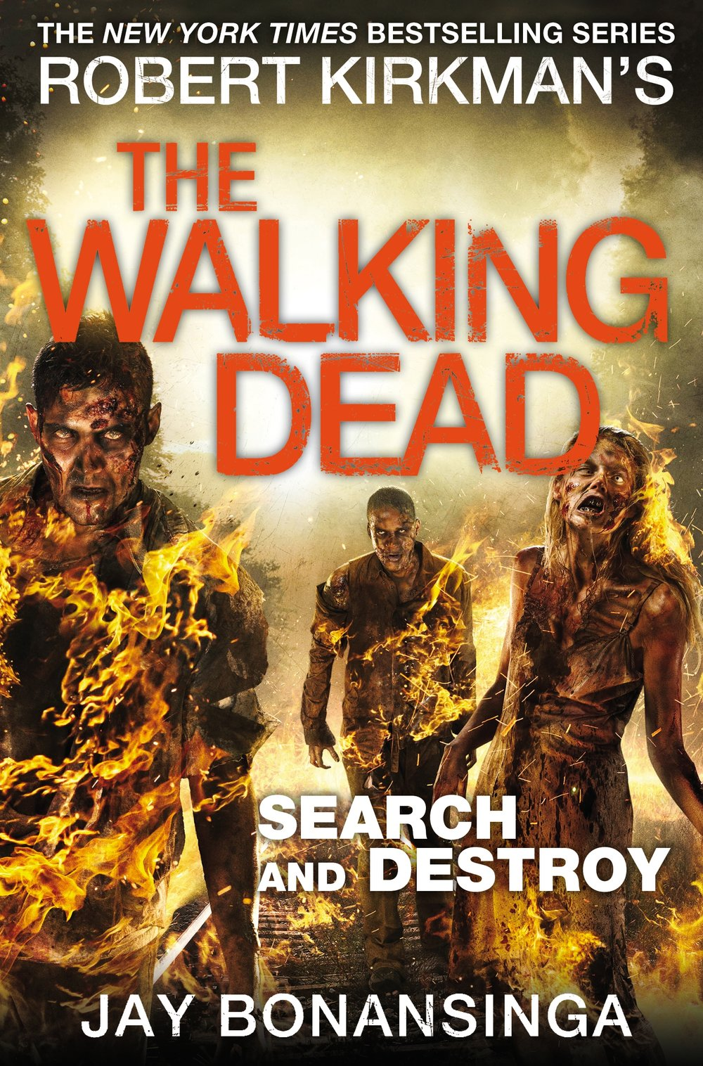 9781447275787The Walking Dead Search and Destroy.jpg